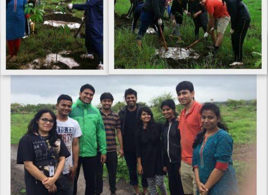 Tree Plantation Activity at Aundh