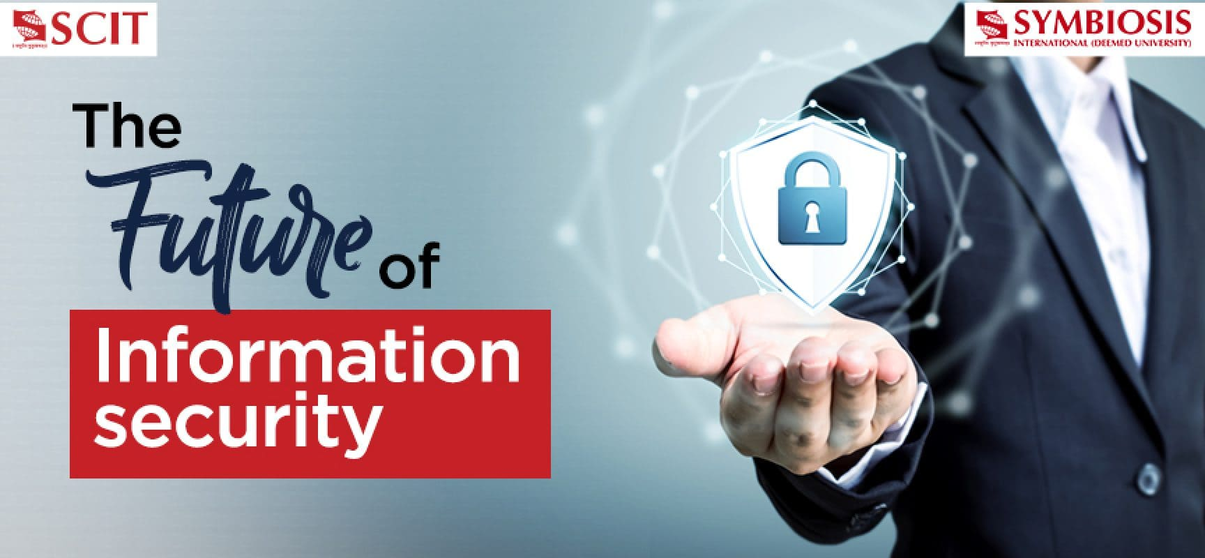 The Future of Information Security
